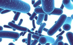 Lưu ý khi bổ sung lợi khuẩn cho tr